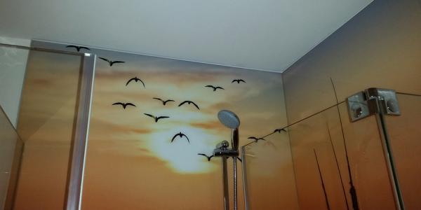 Duschanlage mit Motivbild - Danach: 12